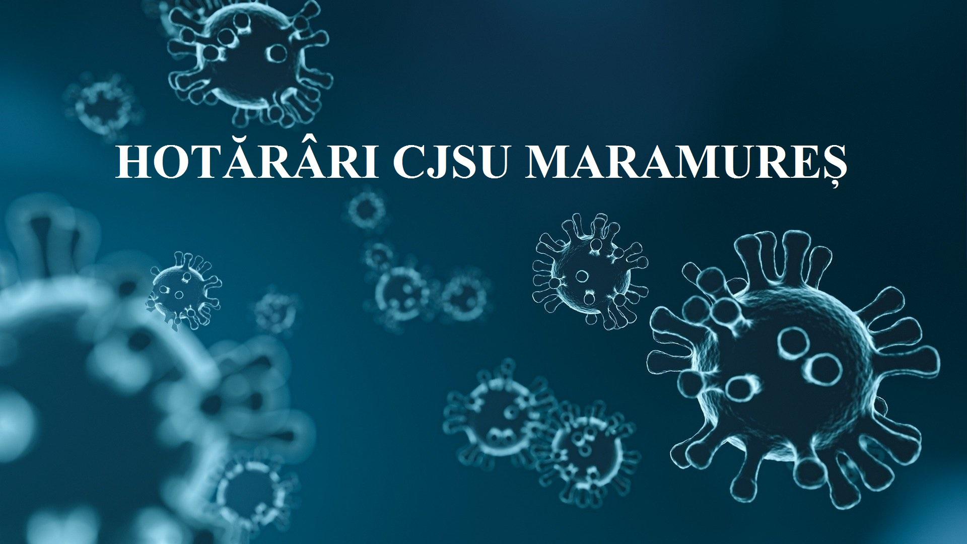 Hotarari CJSU Maramures